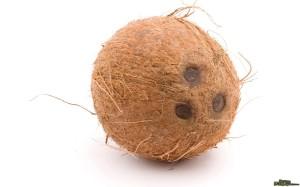 Coconut-pic1-1024x640